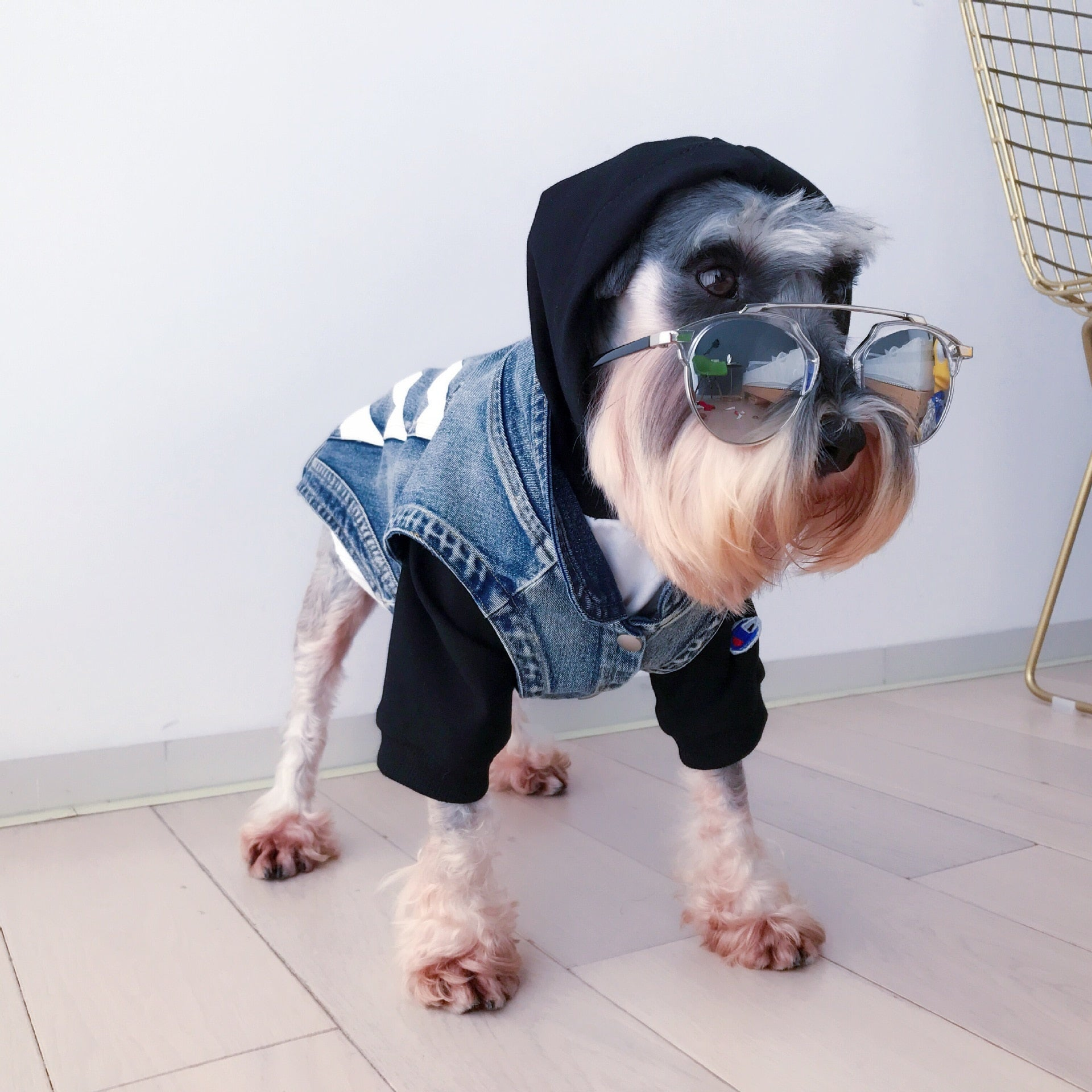 Fashion Dog Vest for Small Dogs Denim Coat Jacket