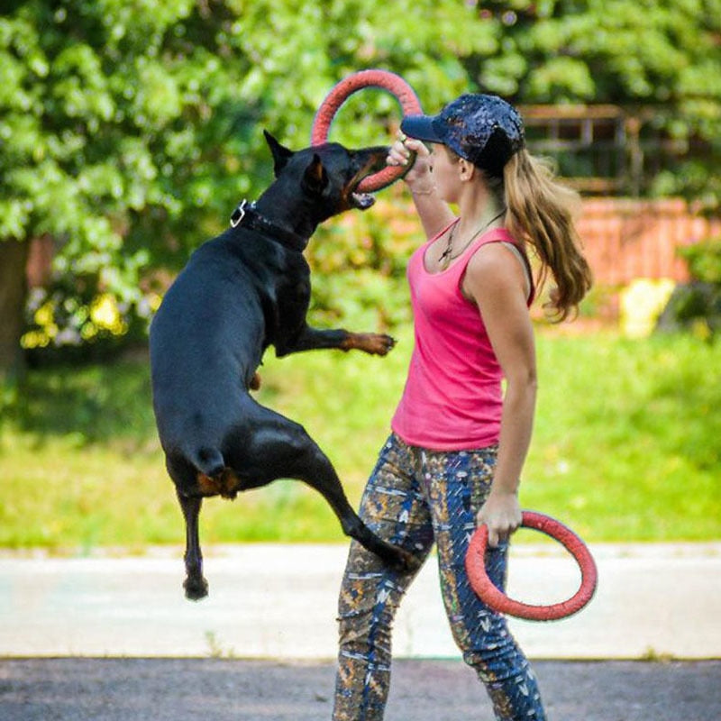 Outdoors Tool Dog EVA Flying Discs Pet Training Ring Interactive
