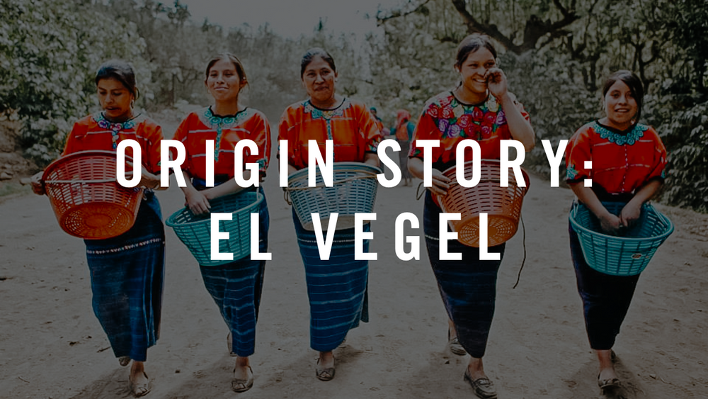 Origin Story: el Vergel