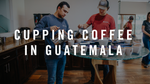 Cupping Coffees in Guatemala
