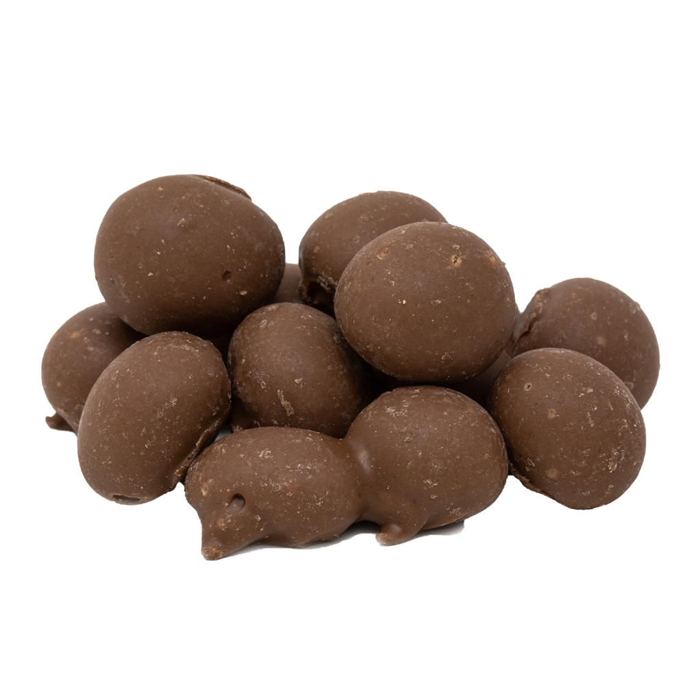 Double Dipped Chocolate Peanuts 11 oz.
