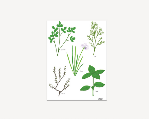 Herb Print - Edith May Designs