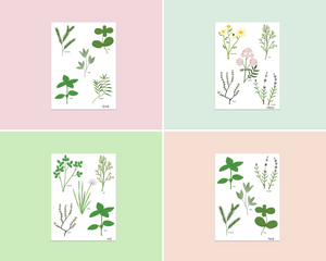 Herb Garden Postcard Pack - Edith May Designs