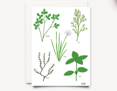 Herbs (eat)  Greeting Card - Edith May Designs