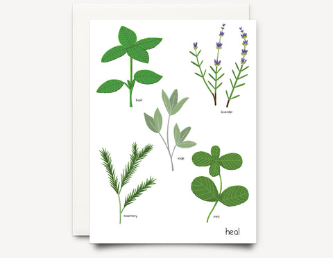 Herbs (heal)  Greeting Card - Edith May Designs