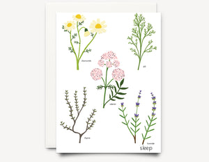 Herbs (sleep)  Greeting Card - Edith May Designs