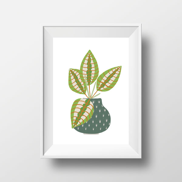 Prayer Plant Print - Edith May Designs