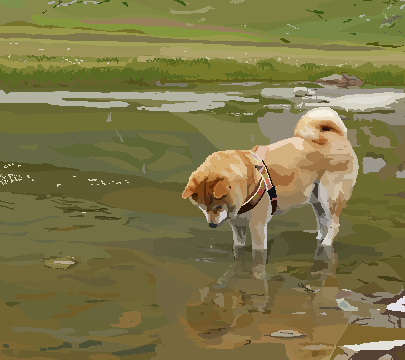 5 x 5 Inch Shibu Reflection Pixel Art
