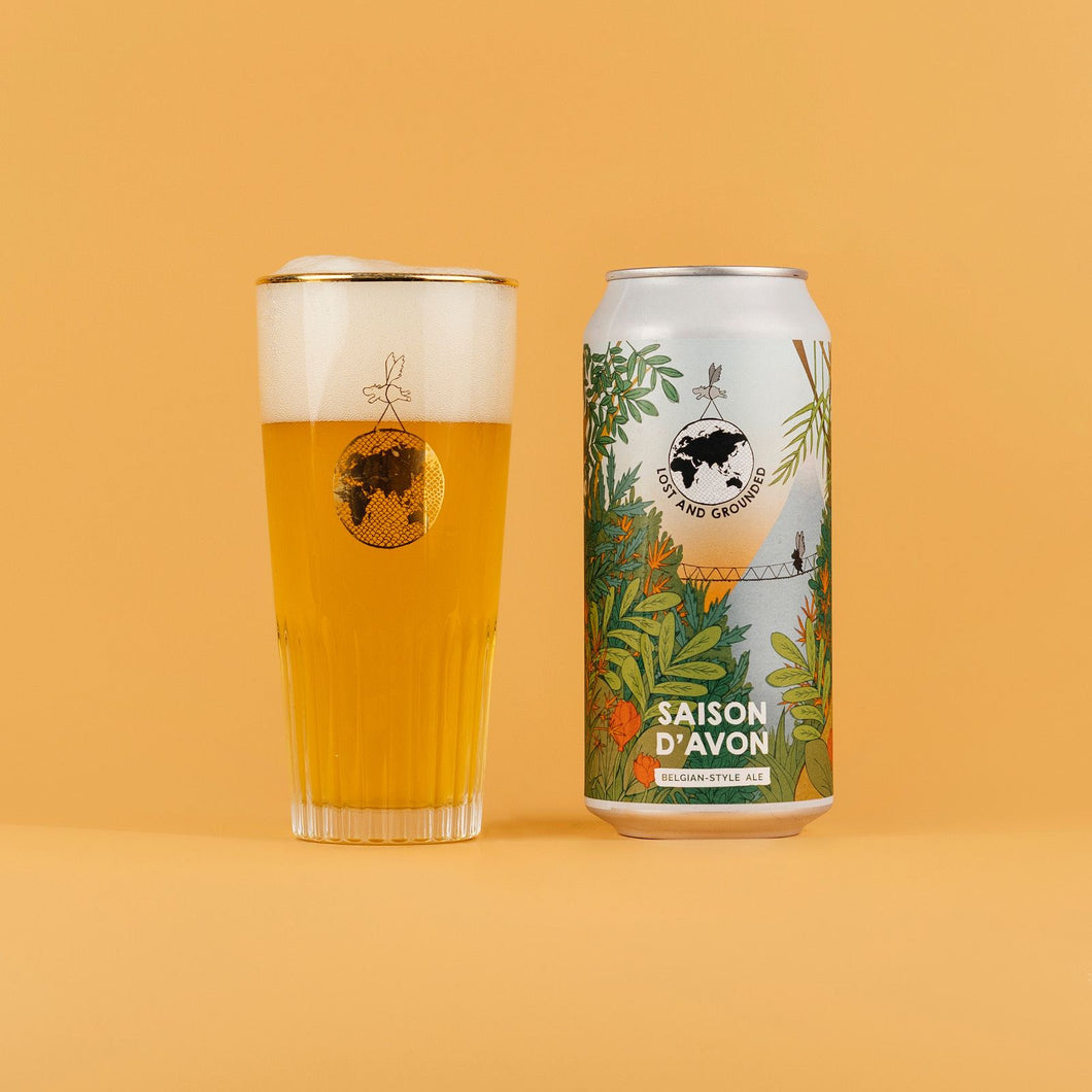 Lost & Grounded - Saison D'Avon