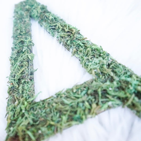 "Moss Letters - 10,"" 15"" or 20"""