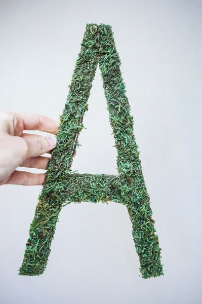 Moss Names, Childrens Wall Art, Grass Names, Living Names, Wall Decor, Home Decor, Woodland Nursery, Name Signs, Moss Nursery Name, Custom Moss, Floral Name, kids room, moss nursery sign, moss name sign, moss letters, baby gift, woodland baby shower, boy nursery name letters, boy nursery sign, name, nursery decor, boy nursery decor, girl nursery decor