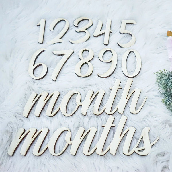 Baby Monthly Milestone Wood Cutouts - Baby Shower Gift - Monthly Photo Prop - Milestone Marker - New Baby Gift - Babys First Year