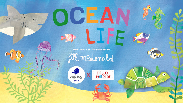 Jaq Jaq Bird x Hello, World! Story Time — Ocean Life