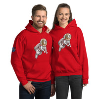 Unisex Hoodie- Space Bunsen with PASA logo on the shoulder!