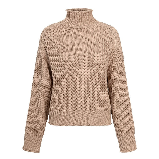 Turtleneck Women Sweater Autumn Winter Long Sleeve Jumper