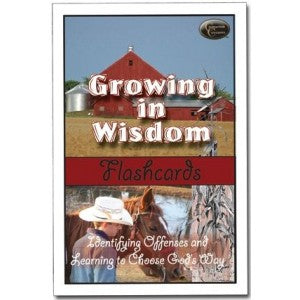 Growing in Wisdom Flashcards