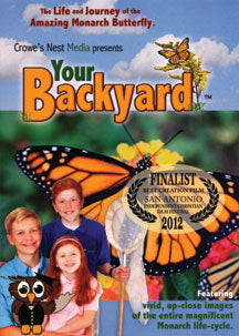 Monarch Butterfly (Your Backyard Series) (DVD)