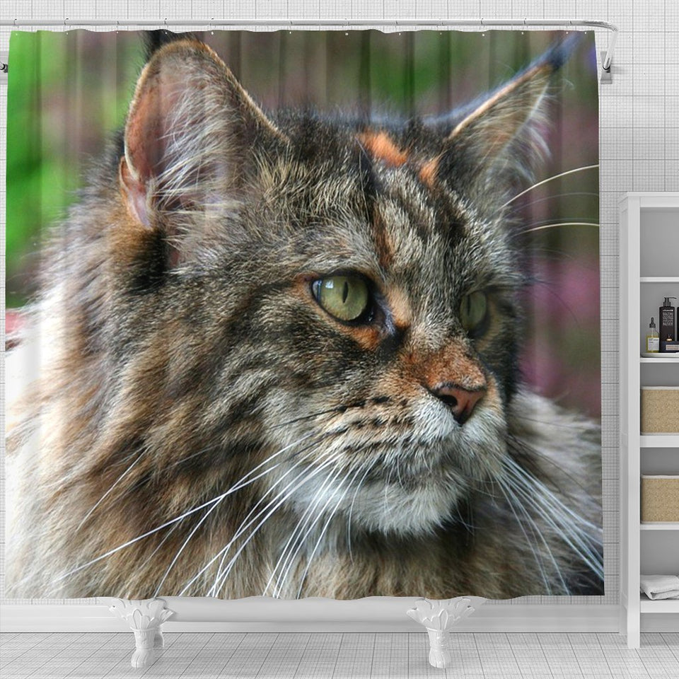 Amazing Maine Coon Cat Print Shower Curtains - grumpycat.store