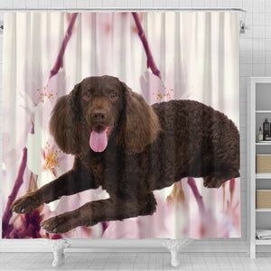 American Water Spaniel Print Shower Curtains - grumpycat.store