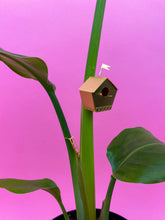Load image into Gallery viewer, TINY BIRDHOUSE
