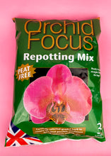 Load image into Gallery viewer, ORCHID REPOTTING MIX