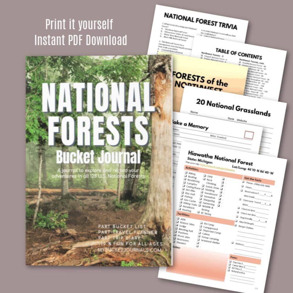National Forests Bucket Journal - Digital