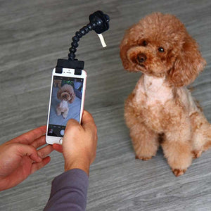 Pet Selfie Stick,,nautilus-west
