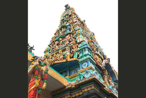 Saris, Sultans & Shophouses: Chinatown & Kampong Glam (Tour price based on group of 5 person)