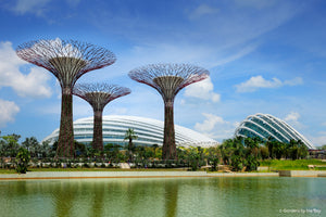 Gardens by the Bay Admission with Cocktail/Mocktail at Lavo