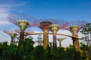 ibis Budget Singapore IMPERIAL  l Sing Swee Kee Chicken Rice Workshop OR Gardens by the Bay Admission Ticket