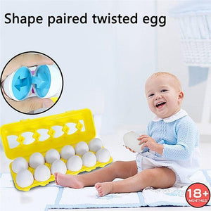 COGNITIVE FUNCTION DEVELOPMENT EGGS-12 PACK