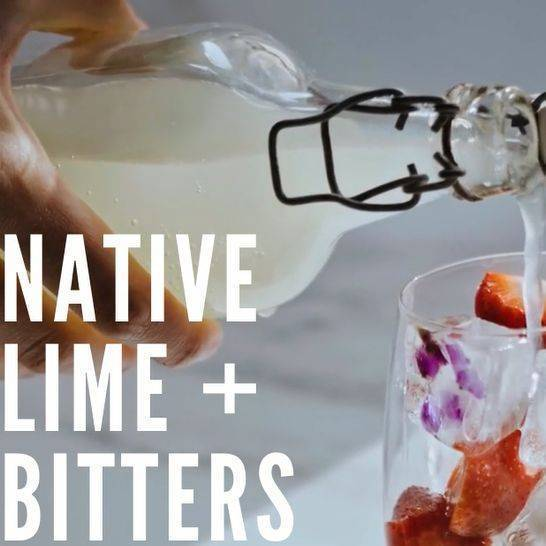 Native Lime + Bitters Cocktail