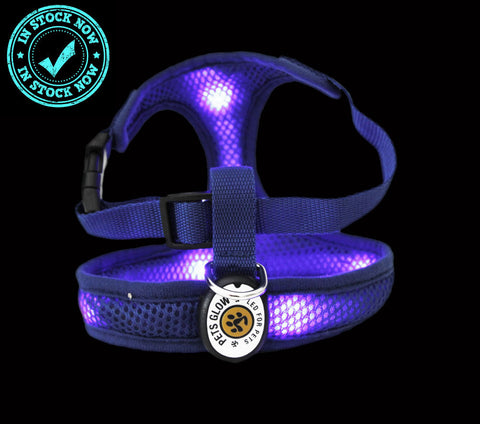 LED K9 Comfort Dog Harness Blue