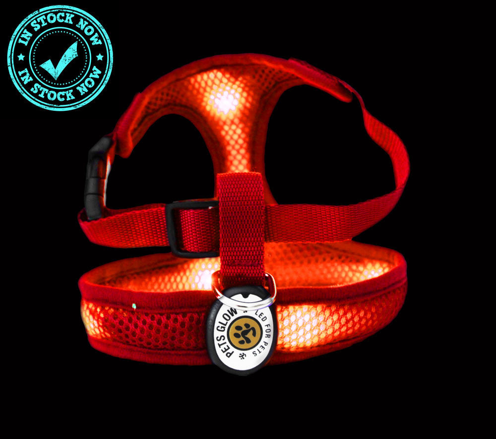 LED K9 Comfort Dog Harness Red