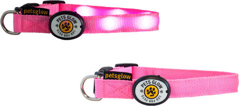 Outshined LED Dog Collar Pink