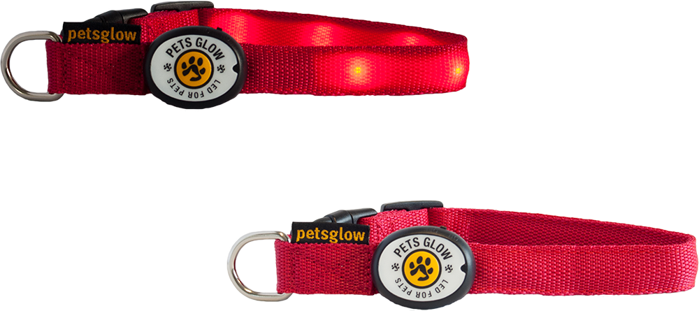 LED Dog Collar Outshined Red