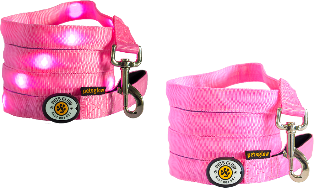 LED dog lead Outshined Pink
