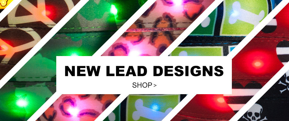 New LED Dog Collar Lead Collection