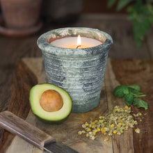 Load image into Gallery viewer, Lime Leaf & Oregano Herban Garden Candle 12oz WITH HERB SEEDS