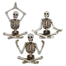Load image into Gallery viewer, Assorted Zen Skeleton
