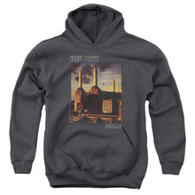 Load image into Gallery viewer, Pink Floyd - Faded Animals Youth Pull Over Hoodie