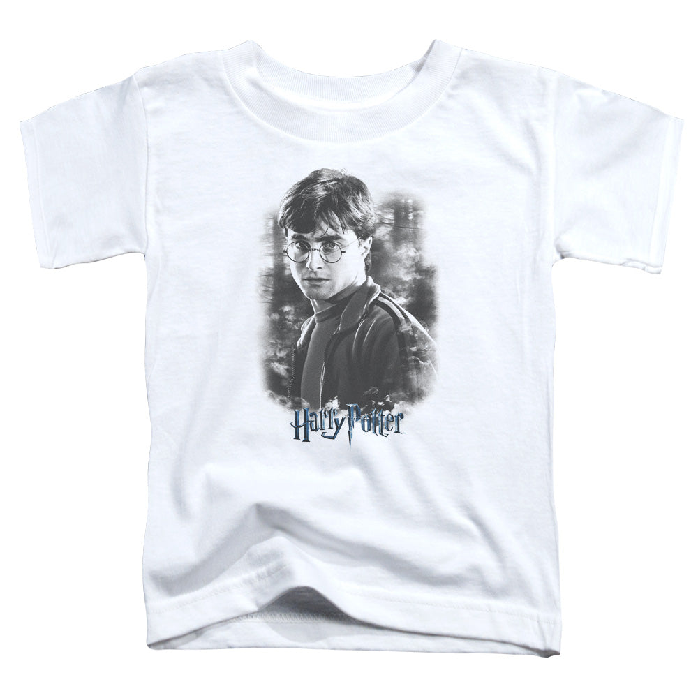 Harry Potter - Harry In The Woods Discontinued