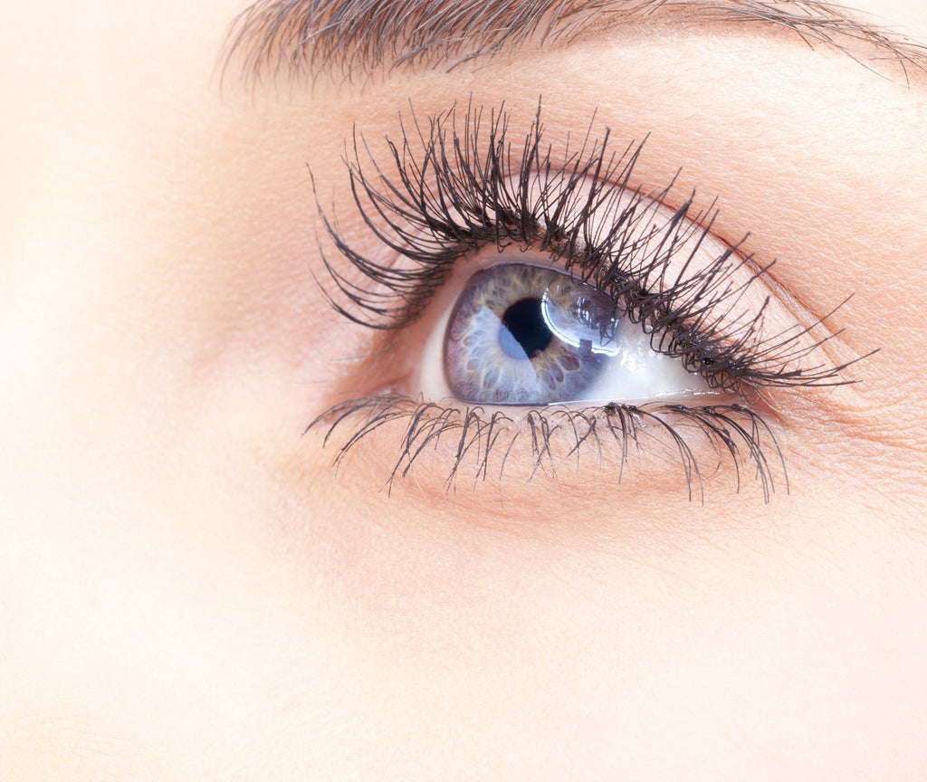 Lash Wednesday! How to keep your lashes healthy and grow to their full potential