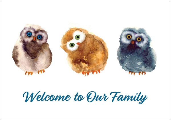 Welcome To Our Family - Baby Owls Std Card Textured (6 Pack)Welcome To Our Family - Baby Owls Std Card Textured (6 Pack)