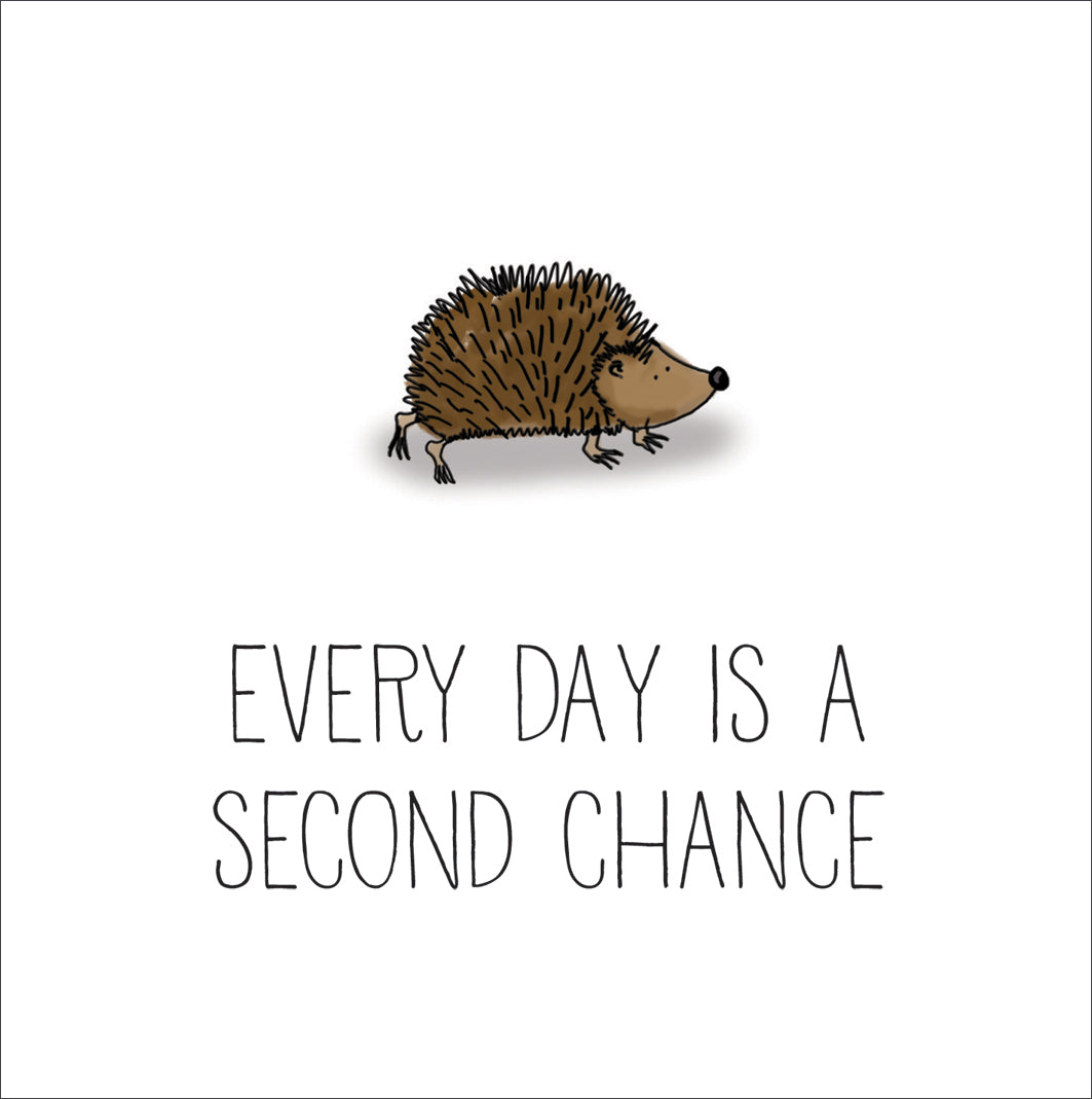 Hedgehog - Every Day Is A Second ChanceHedgehog - Every Day Is A Second Chance