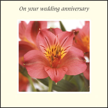 On Your Wedding Anniversary ****On Your Wedding Anniversary ****