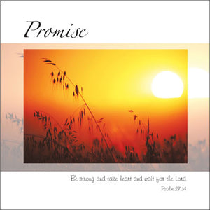 Promise ****Promise ****