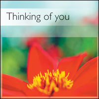 Thinking Of You ****Thinking Of You ****