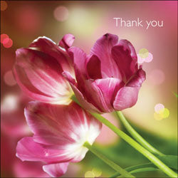 Thank You - Square Card GlossThank You - Square Card Gloss