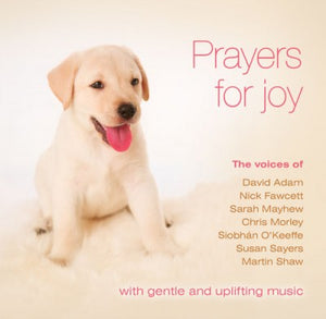 Prayers For Joy - Mp3Prayers For Joy - Mp3
